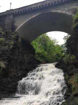Ithaca Gorge